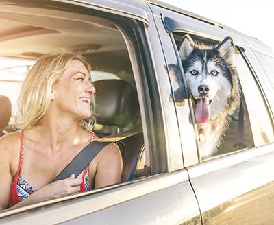Lady and dog in vehicle