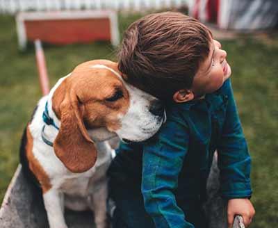Dog pushing head against boy.